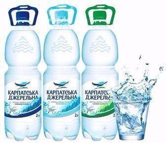 Вода мінеральна сильногазована, слабогазована, негазована Карпатська Джерельна 2л